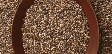 Graines germées de chia