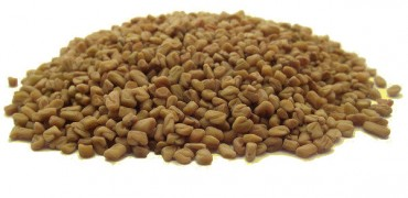 Graines germées de fenugrec